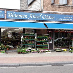 Bloemen Abeel Diane
